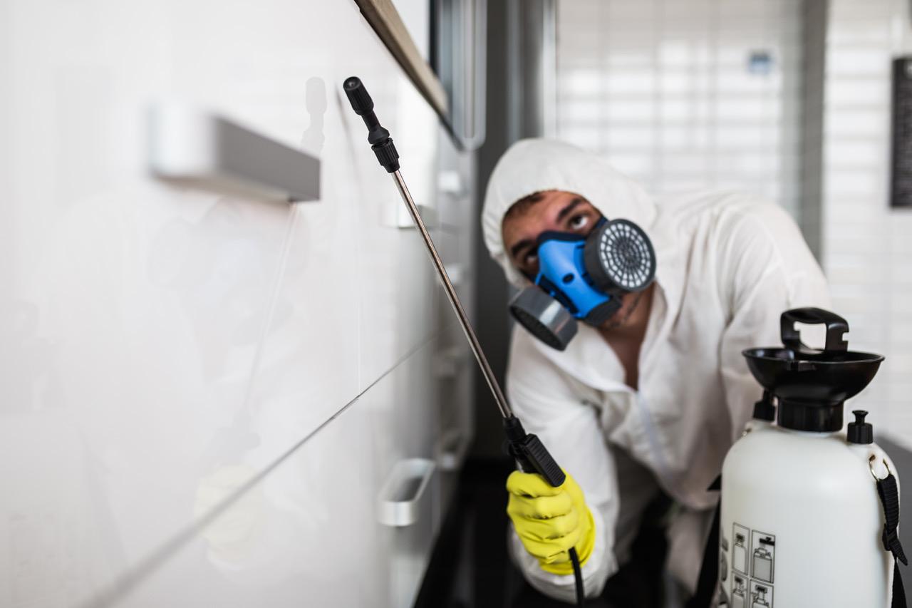 Sprzątanie po zalaniu w Sosnowcu